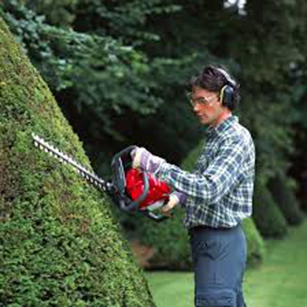 EDGE & HEDGE & TILL - HEDGETRIMMERS, EDGERS & ROTARY HOES