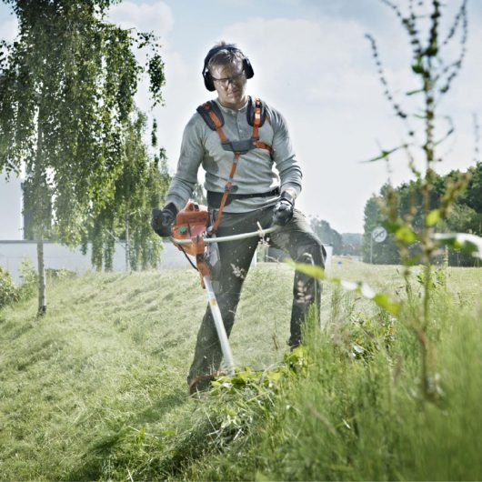 brushcutters and trimmers